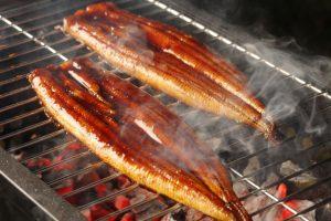 うなぎの焼き方は関西と関東で違う!どちらが美味しいのか比較
